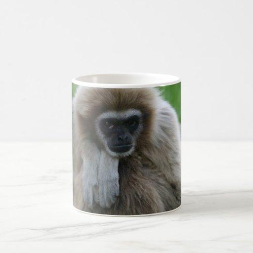 Taza del Gibbon