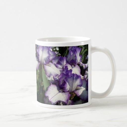 Taza del iris