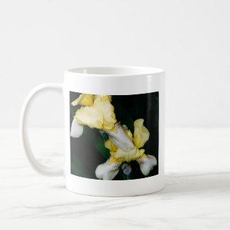 Taza del iris amarillo