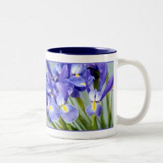 Taza del iris de la primavera