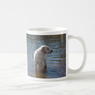 Taza del labrador retriever en el lago