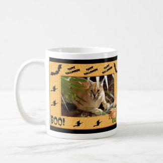 Taza del lince de Caracal
