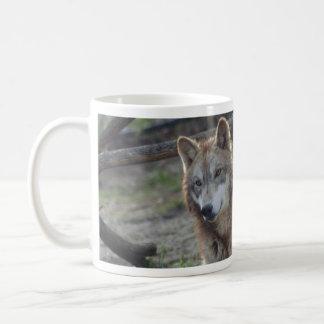 Taza del lobo de los lobos