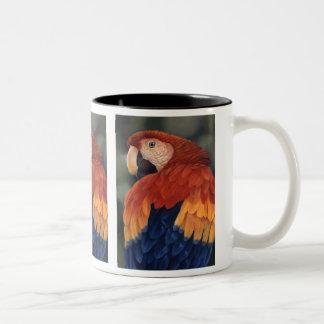 Taza del Macaw