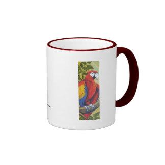 Taza del Macaw I
