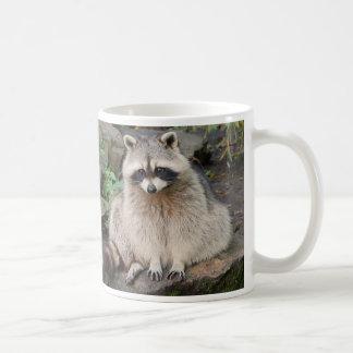 Taza del mapache