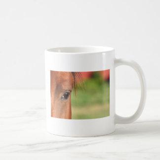 Taza del ojo del caballo