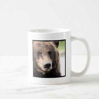 Taza del oso de Brown del grisáceo