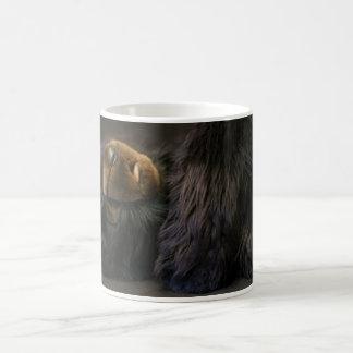 Taza del oso de peluche el dormir - oso de