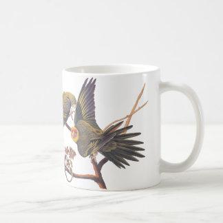 Taza del Parakeet de Audubon Carolina