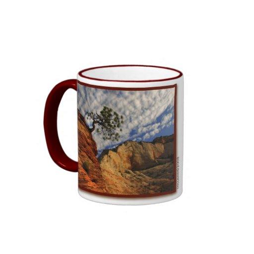 Taza del parque nacional de Zion