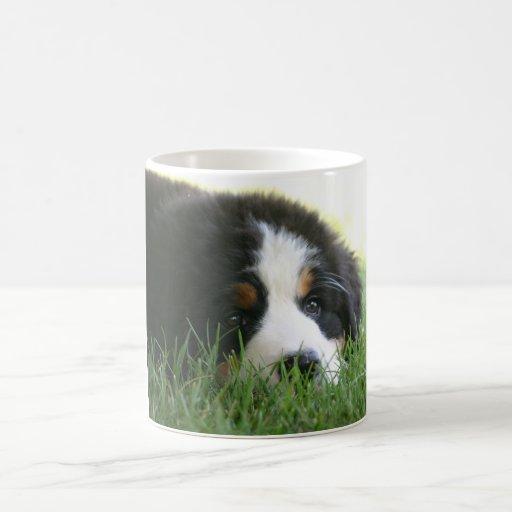 Taza del perrito de Bernese