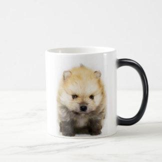 Taza del perrito de Pomeranian