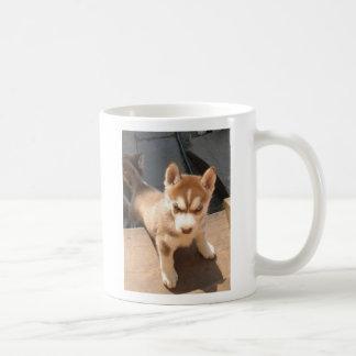Taza del perrito del husky siberiano