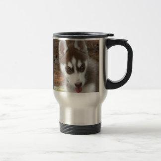 Taza del perrito del husky siberiano DF