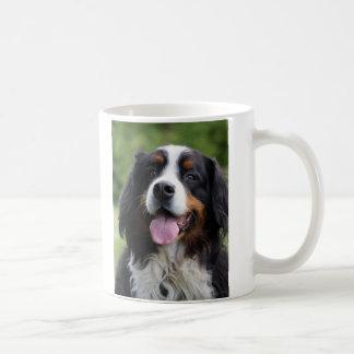 Taza del perro de montaña de Bernese, idea del reg