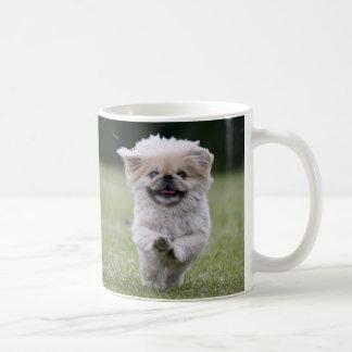 Taza del perro de Pekingese, amo la foto linda