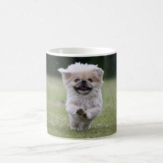 Taza del perro de Pekingese, coffe lindo de la