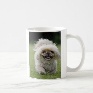 Taza del perro de Pekingese, idea del regalo