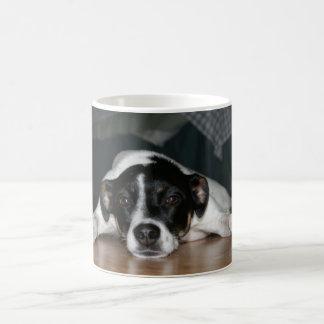 """Taza del perro de Terrier de rata de """"Molli"""""""