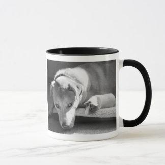 Taza del perro y del conejillo de Indias