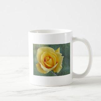 Taza del rosa amarillo