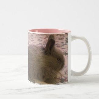 Taza del tono del conejito dos del zorro plateado