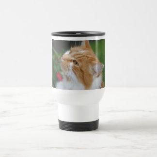 Taza del viaje del gato de la mermelada