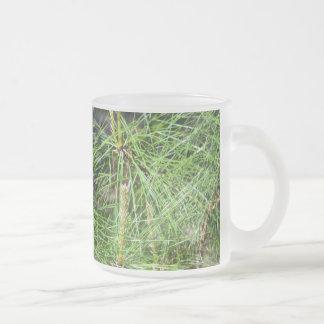 Taza del vidrio esmerilado de las agujas del pino