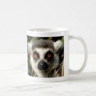 Taza desconcertante del Lemur