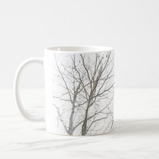 Taza desnuda del árbol