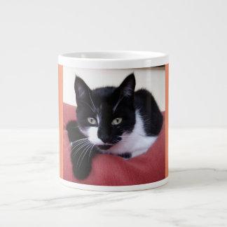 Taza enorme de la foto del gato taza grande