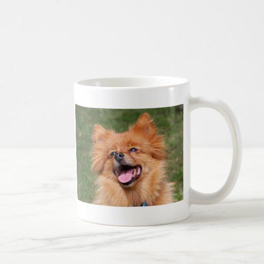 Taza feliz del perro de Pomeranian, idea del