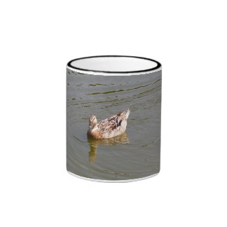 Taza femenina del pato 3 del pato silvestre
