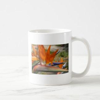 TAZA, flor de la ave del paraíso # 4548 Taza