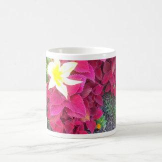 Taza floral del café o de té