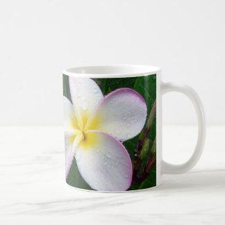 Taza hawaiana blanca y púrpura amarilla de la flor