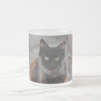 Taza helada 2016 del gato negro