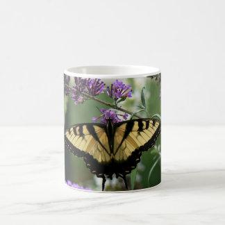 Taza hermosa de la mariposa
