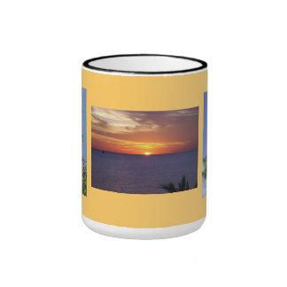 Taza hermosa del regalo de la Florida de la Tres-I