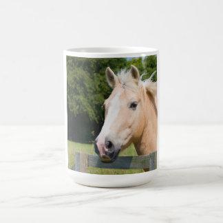 Taza hermosa del té del café de la foto del