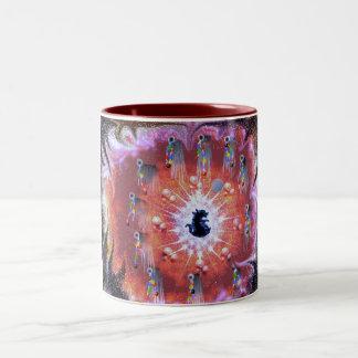 taza ideal del colector 2
