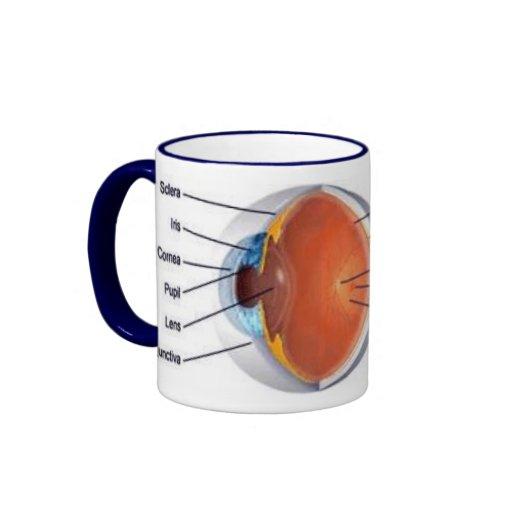 taza II del ojo