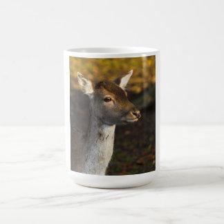 Taza joven de los ciervos