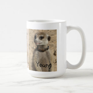 Taza joven de Meerkat
