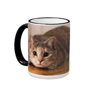 Taza juguetona del gato para los zurdos