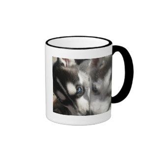 Taza linda del perrito del husky siberiano