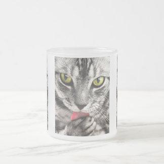 Taza linda del vidrio esmerilado de la foto del