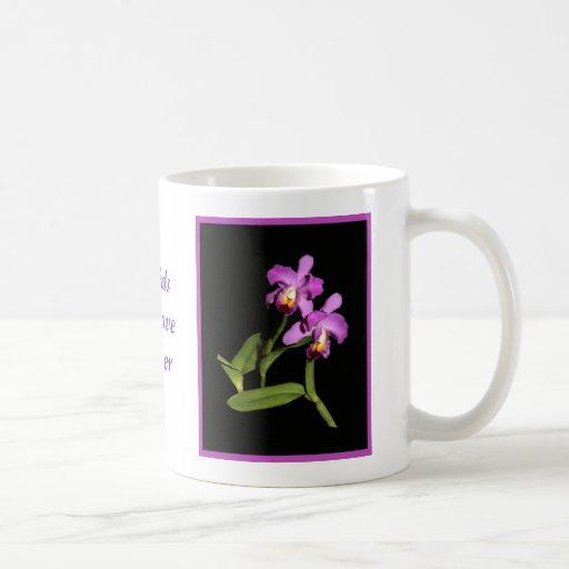 Taza magenta imponente de la orquídea de Cattleya