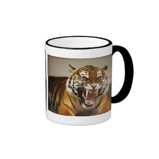 Taza malaya del tigre #2